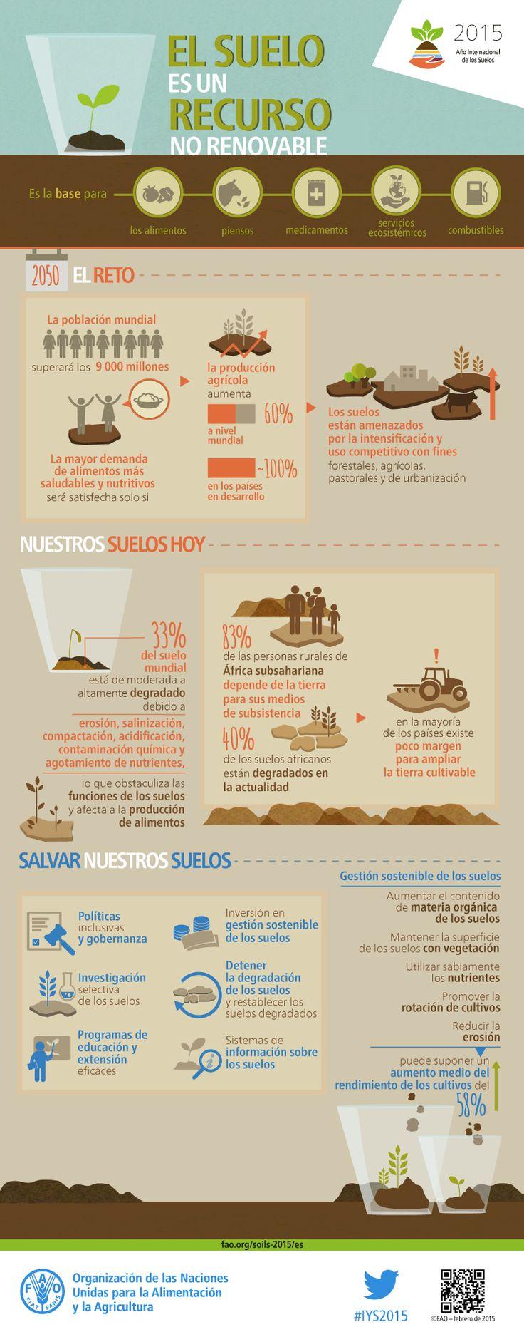 Infografía: El suelo es un recurso no renovable -  Su conservación es esencial para la seguidad alimentaria y nuestro futuro sostenible. El suelo es un recurso finito, lo que implica que su pérdida y degradación no son reversibles en el curso de una vida humana. - Fuente: FAO