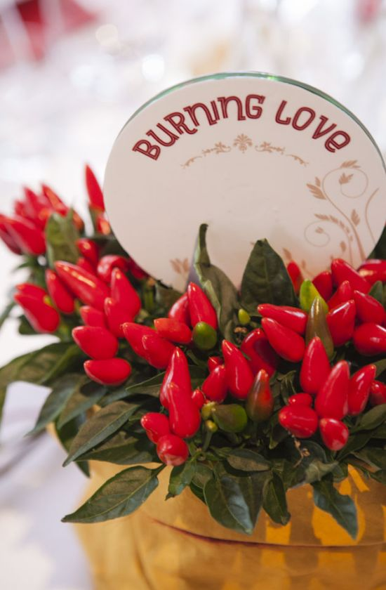 Chili pepper centerpiece - Phil and Paty