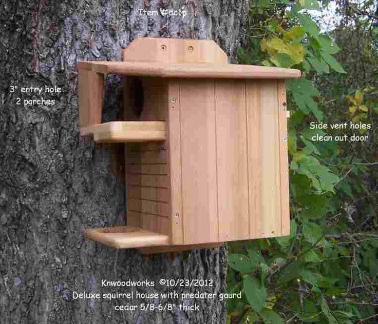 106 best squirrels! images on pinterest | squirrel feeder, bird