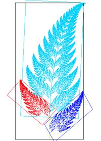 An image of a fern which exhibits affine self-similarity