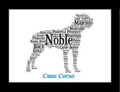 Traits of the Cane Corso If you are a pet parent or are shopping for a dog lover, our pet portrait wall art makes an ideal addition to a dog lover's home's décor. This listing is for a Cane Corso Dog