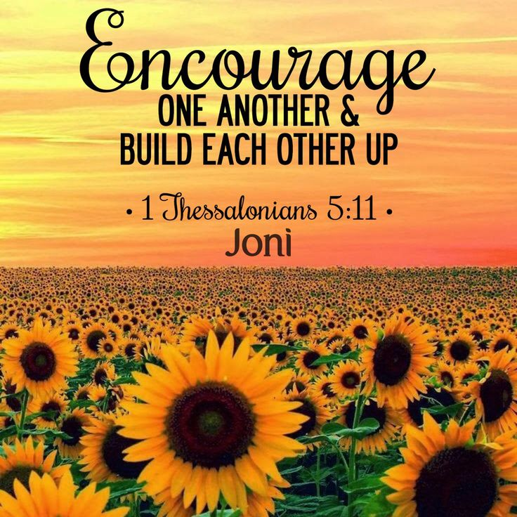 """""""Encourage one another and build each other up."""" -1 Thessalonians 5:11 [Daystar.com]"""
