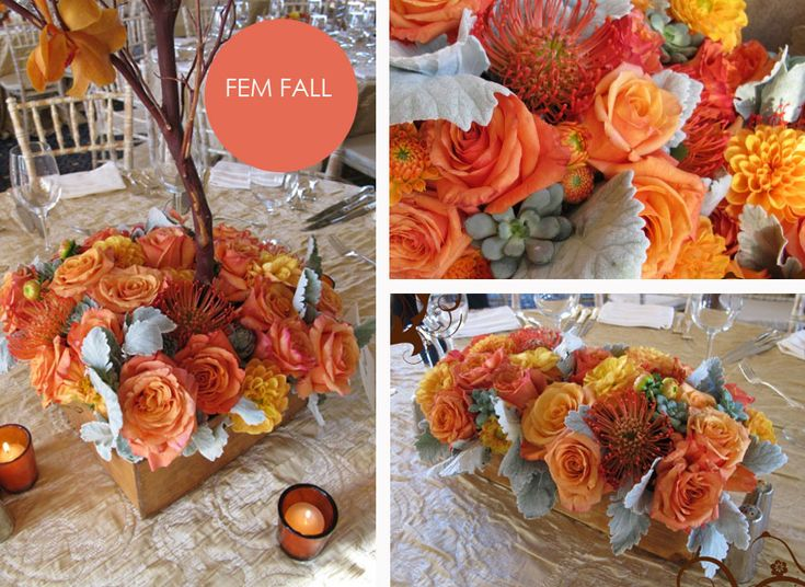fall wedding color schemes 25 best images about orange and champagne wedding on 27737