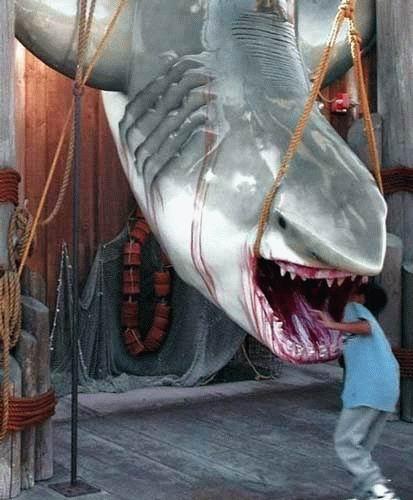 Big Shark Hunt