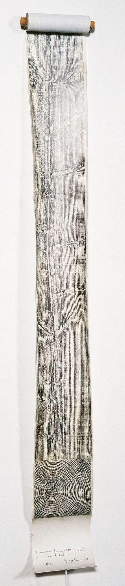 Giuseppe Penone, Albero - Il suo essere fino al 49mo anno d'età in un'ora fantastica (Tree: Capturing his being of 49 years of life in a fantastic moment) 1972
