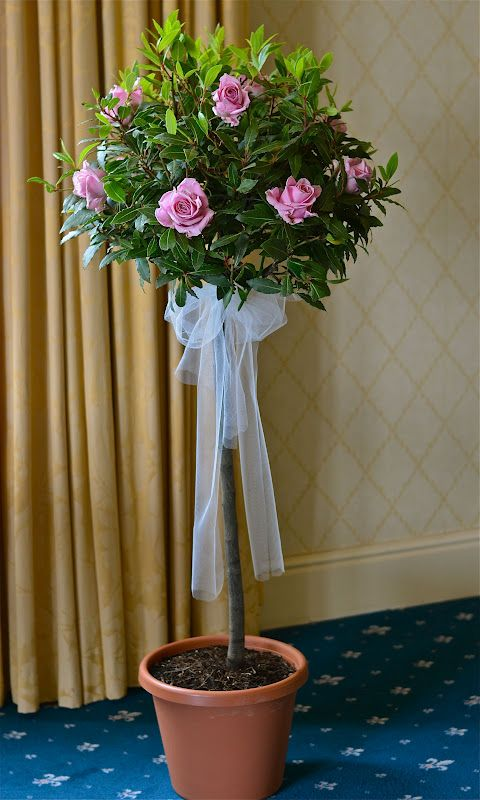Wedding Flowers Blog: Colours Pink green cream