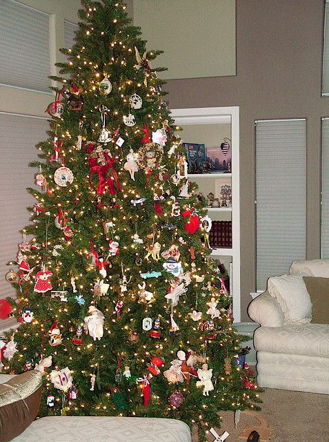Family Christmas Tree - Don't let any more opportunities go by in capturing the knowledge of your aging family generations, capture it and get it online with our help