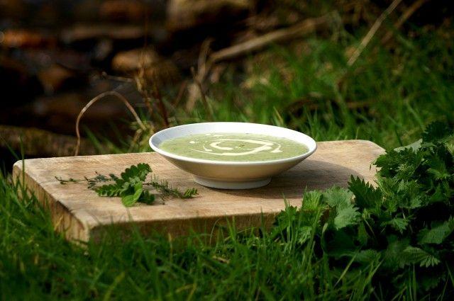 Ricette vegane low cost: polpette di ortiche e crema di ortiche