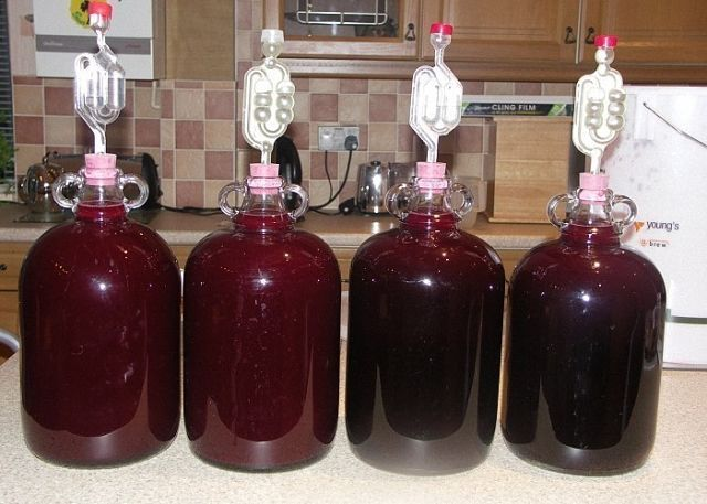 07:59  Домашнее сливовое вино