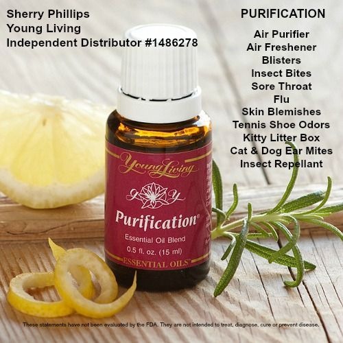 Young Living Purification essential oil blend - Insect Bites, Blisters, Skin Blemishes, Cat and Dog Ear Mites, Insect Repellant, Air Purifier and More. Find out more about Purification here