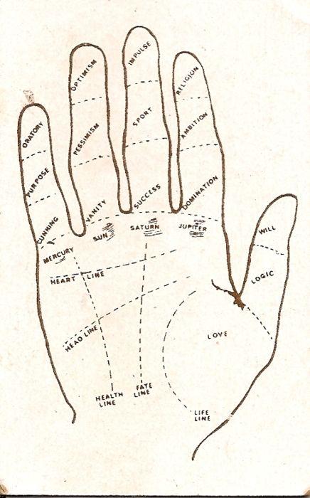 palmistry map