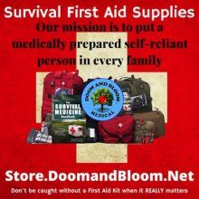 Here's my list of Survival and Collapse medical supplies with natural remedies included. We include natural remedies for first use or back up to save on items that won't be produced in an austere setting.  Dr.Bones and I spend a lot of time and energy researchi