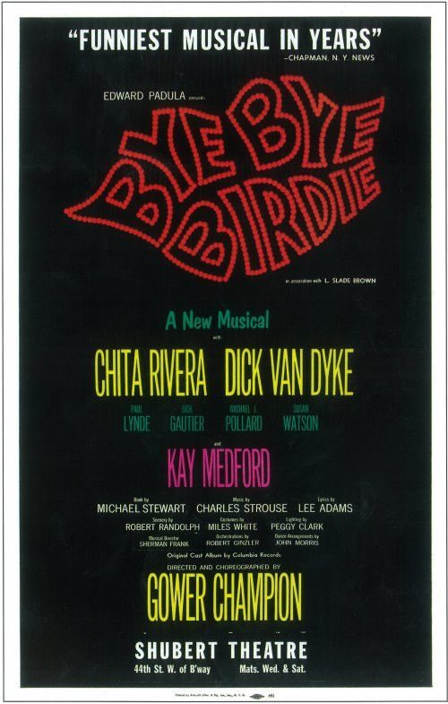 "CAST: Dick Van Dyke, Chita Rivera, Dick Gautier, Susan Watson, Paul Lynde and Charles Nelson Reilly; DIRECTED BY: Gower Champion; Features: - 14"" x 22"" - Packaged with care - ships in sturdy reinforce"