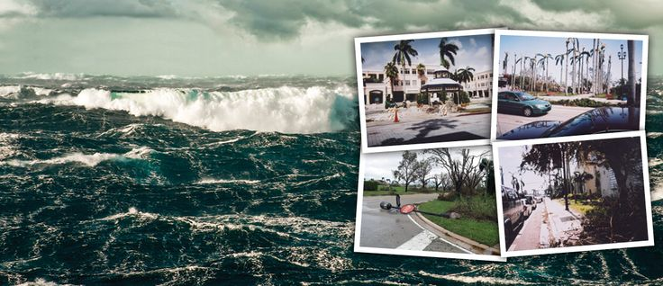 The 2005 And 2004 Hurricane Seasons Weren't Easy On Florida. Here Are 5 Stories Of Hope And Survival.