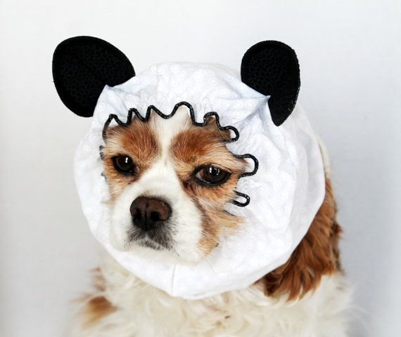 Panda Dog Snood / Limited Edition Pet Hat / Long by daydogdesigns, $16.50