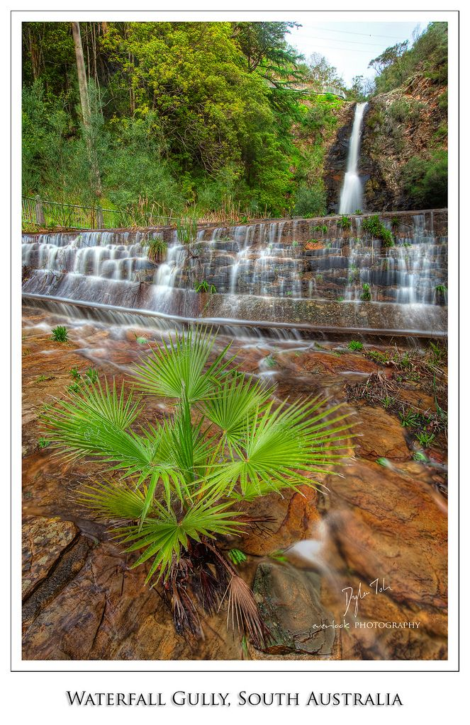 Waterfall Gully, Cleland Conservation Park near Adelaide, South Australia  To learn more about #Adelaide | #SouthAustralia, click here: http://www.greatwinecapitals.com/capitals/adelaide-south-australia