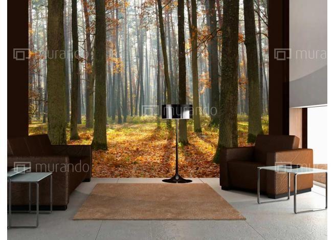 Podzimní les #fototapety