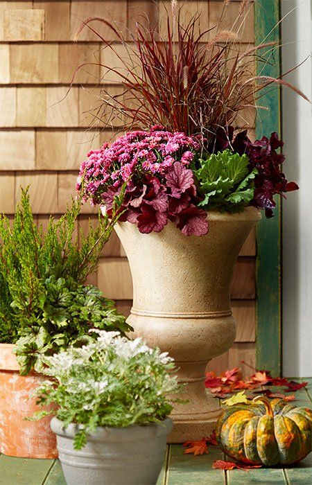 Create Vignettes Featuring Fall Containers And Accessories Like Pumpkins  And Gourds. #fall #fallplanters