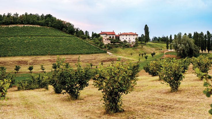 The $4.2 million purchase includes a winery and prime Nebbiolo vineyards in Italy's Monvigliero cru.