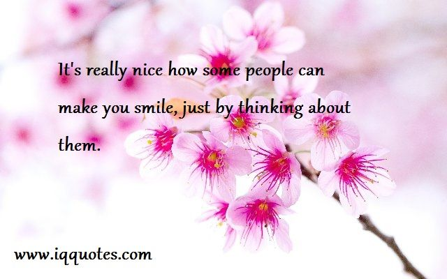Some Nice Quotes  Some Nice Quote  Some Nice Quotations  Nice Quote