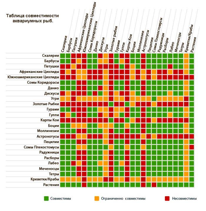 Аквариумные рыбки совместимость видов таблица