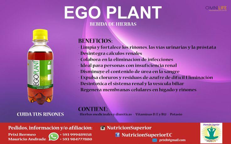 Ego Plant - Omnilife - Jugo herbal listo para tomar! Ayuda mejorar el sistema renal principalmente.
