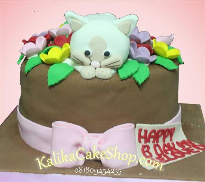 Kue Ulang Tahun Gambar Kucing Lucu Birthday Birthday Cake