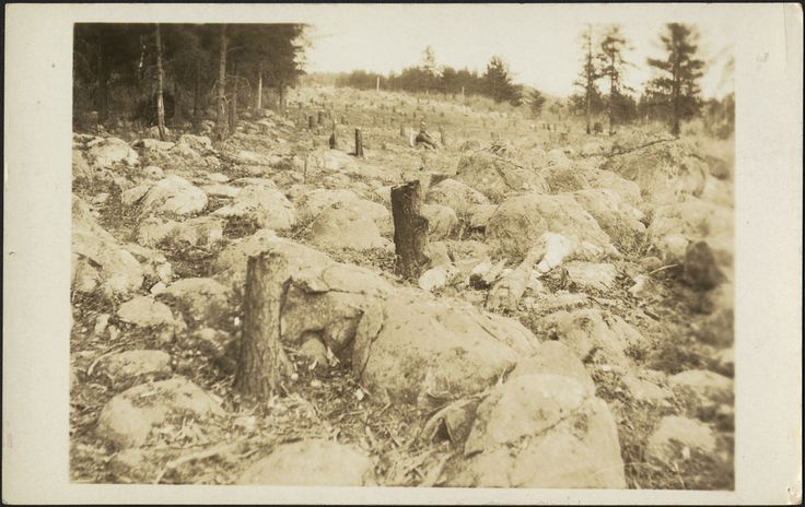 Trans-Canada Highway from Fort William to Kenora. Making a roadway through thick bush / Autoroute Transcanadienne de Fort William à Kenora. Construction de la route dans la brousse | by BiblioArchives / LibraryArchives