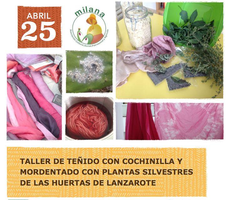 Taller de teñido con cochinilla y mordentado con plantas silvestres de las huertas de Lanzarote