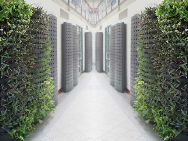 Podplants Aeroponic System Consumes Less That 1 10 The