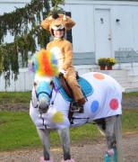Rider is Alex the Lion and horse is Marty the Afro Circus Zebra from the movie Madagascar 3
