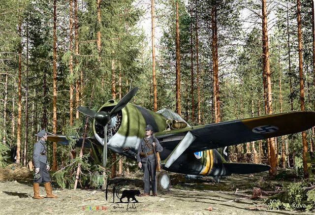 A Finnish Brewster Buffalo 239 fighter (BW-352) of (Squadron) Lentolaivue/24 at Selänpää airfield. 24th June 1941.