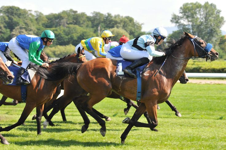 """Free and family outings in the Ile-de-France - Alongside the races taking place on Sunday at the Hippodrome de Vincennes, the children may well pass a """"superdimanche!"""" Until February 14, the Hippodrome de Vincennes invites the whole family having fun on the theme of horse racing through joyful activities and initiations such as pony baptisms or visit the miniature farm."""
