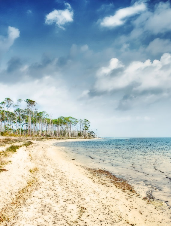 32 Best Images About I 39 Ll Take Pensacola Please On