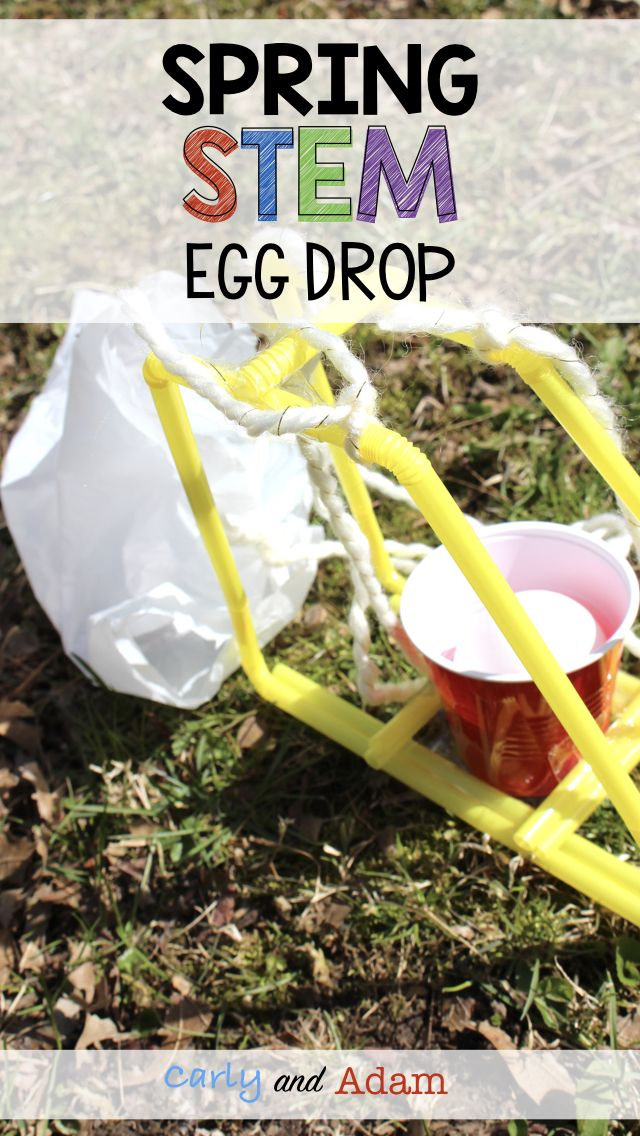 Spring Classroom Activity (Spring STEM Activity): Design a device that will protect an egg from cracking or breaking when it falls!