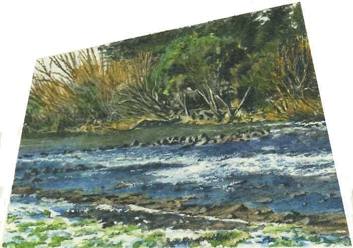 The Weir at Deloraine, Tasmania.