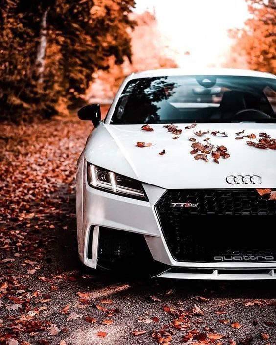 The Most Luxury Cars In The World With Best Photos Of Cars Audi Cars Luxury Cars Audi Audi Tt Rs