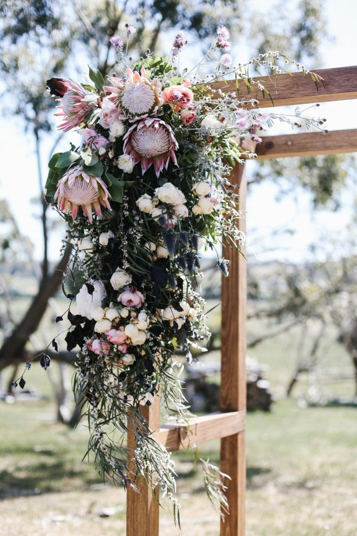 native flower wedding arbour - obsessing over proteas, want them mixed with peonies and/or chrysanthemums