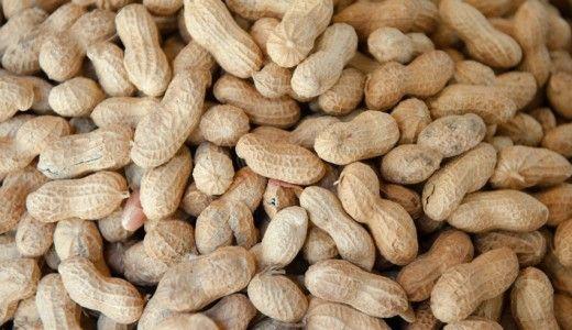 Arachidi fin dai primi mesi di vita per prevenire le allergie. I risultati di uno studio londinese