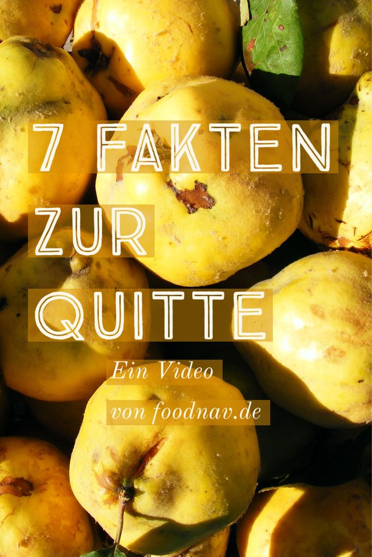 Nützliche und unnütze Fakten zur Quitte.   Jetzt auf www.foodnav.de