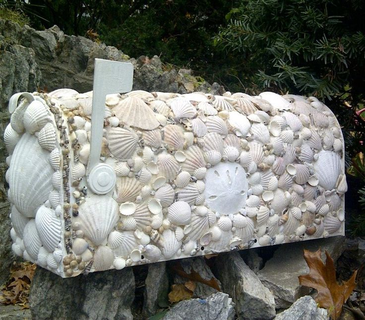 What to do with seashells collected on your beach trip.