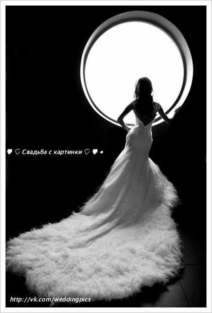 """Шикарное свадебное платье с открытой спиной и длинным шлейфом. Богатая отделка камнями, и необычная отделка шлейфа перьями делает это платье поистине роскошным! Больше свадебных платьев подобного фасона смотрите по тэгу """"Шикарная свадьба"""""""