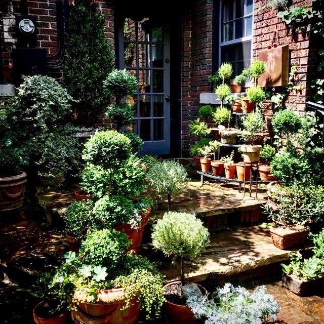 149 best Linda Vater Garden Ideas images on Pinterest ...