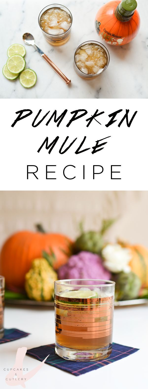 Looking for the perfect fall cocktail idea to serve at Halloween or Thanksgiving? This Pumpkin Moscow Mule recipe is quick and easy!