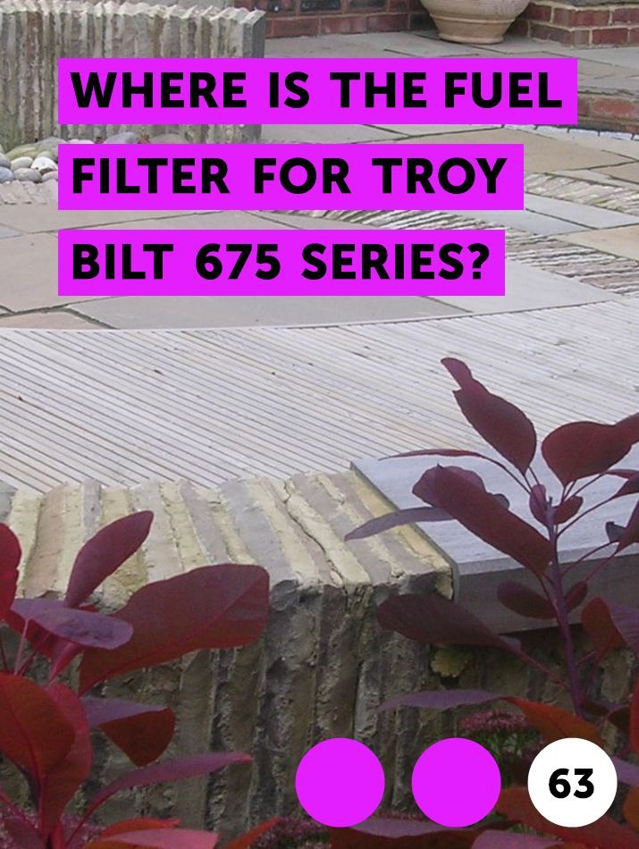 Learn Where Is The Fuel Filter For Troy Bilt 675 Series How To Guides Tips And Tricks Blueberry Plant Blueberry Bushes Growing Blueberries