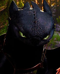 Can we take a moment to appreciate this scene? Toothless probably knows who Astrid is. But scaring her to address that this time, she's not going to be the one to boss Hiccup around because she's popular. Now, she's the omega and he's the alpha. He's willing to protect Hiccup because he knows Hiccup's insecure.