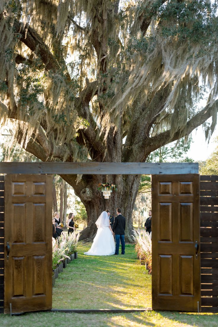 the ceremony site at a florida ranch wedding under an ancient moss draped oak tree has an aisle lined with varnished boxes filled with pampas grass, larkspur and delphinium, and framed by a pair of vintage doors.