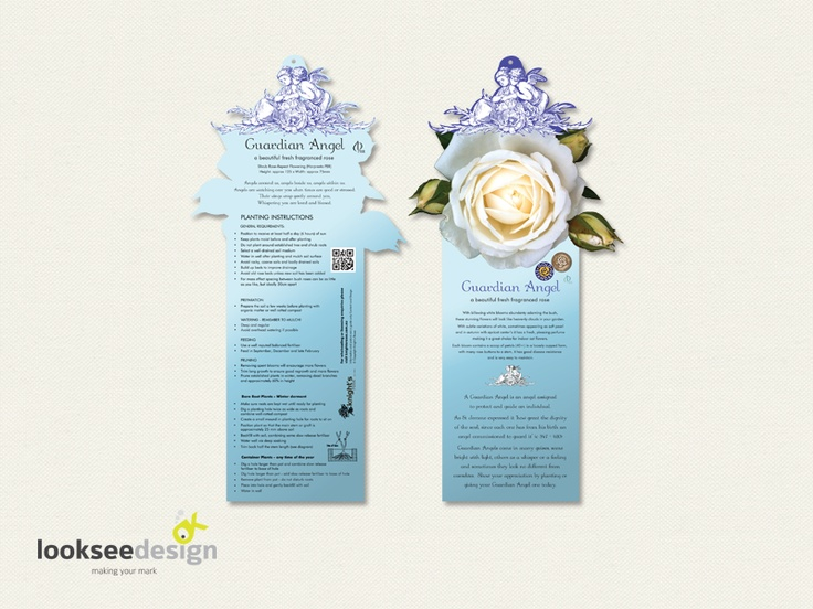 Knight's Roses Guardian Angel Rose Label (blue) - Designed by Looksee Design
