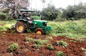 Rakyat Distrik Sota dan Satgas Pamtas Yonif 407 Buka Lahan Pertanian