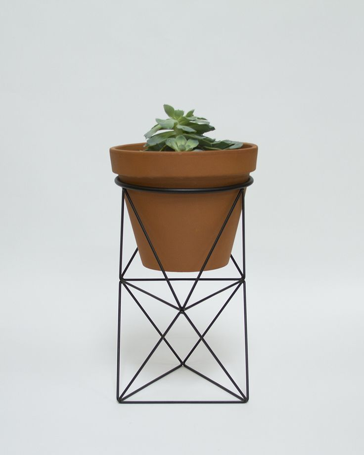 Double Octahedron Ring Planter | Eric Trine
